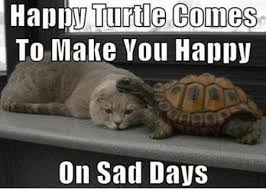 FunniestMemes.com - Funniest Memes - [Happy Turtle Comes To Make ... via Relatably.com