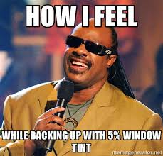 How I Feel While Backing Up With 5% Window Tint - Stevie Wonder ... via Relatably.com