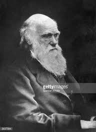 Charles Robert Darwin Stock Photos and Pictures | Getty Images