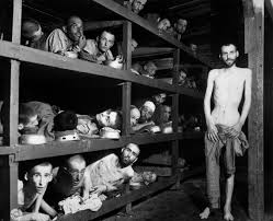 crowded bunks in the prison camp at buchenwald  a lot more information on this famous photograph