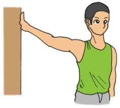 「上腕部と筋」の画像検索結果