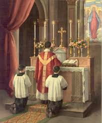 Image result for Latin mass servers