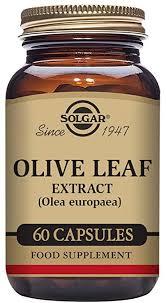 Solgar <b>Olive Leaf</b> Extract Vegetable Capsules - Pack of <b>60</b>: Amazon ...