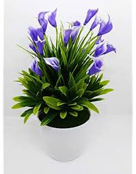 <b>Artificial Plants</b>: Buy <b>Artificial Plants</b> online at best prices in India ...