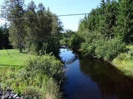 Rivière Henri