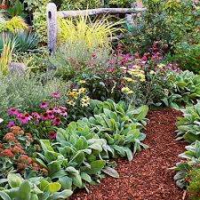 Small Picture 4 Easy Care Flower Beds Perennials Gardens and Garden ideas