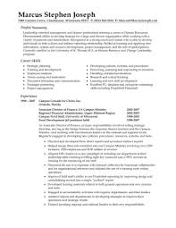 11 good samples professional resume template 9 sample resume for summary for resume examples simple accounting finance resume it professional resume sample it resume