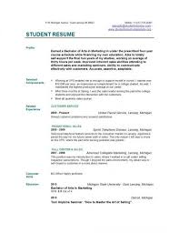 professional resume maker   zlync no need to worry with resumeresume maker example template
