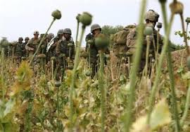 Image result for afghan drug trade