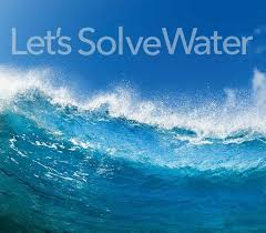 Image result for xylem water images