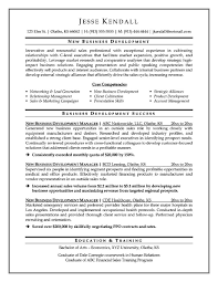 s professional resume samples sample resume for outside s s professional resume samples cover letter executive resumes samples senior cover letter business development executive