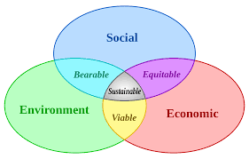 outline of sustainability