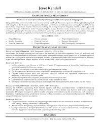 finance director resume sample financial manager resume example finance manager cv pdf