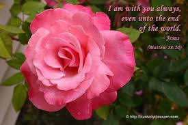 Image result for rose flowers and jesus
