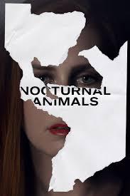 best images about cinerill sharks watch ellen watch nocturnal animals online for cinerill
