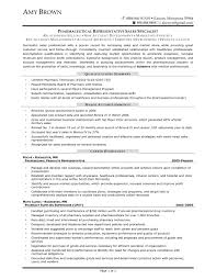 example resume summary of qualifications sample customer service example resume summary of qualifications summary of qualifications how to describe yourself on pharmaceutical s representative