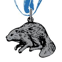 Image result for bsa silver beaver award