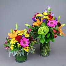 Roses with a <b>Twist</b> - Field of <b>Flowers</b>