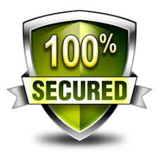 Image result for paypal logo 100% secure