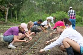 global teens finding the right summer abroad program parentmap sustainable summer photo of teens learning organic gardening principles international travel study abroad