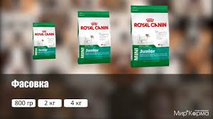 Обзор <b>корма Royal Canin Mini</b> Junior - YouTube