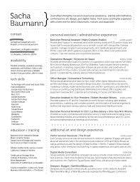 info sacha baumann artist s statement