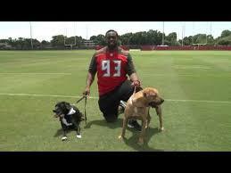 <b>Go</b> Big! Adopt An <b>Adult Dog</b> - Humane Society Tampa Bay