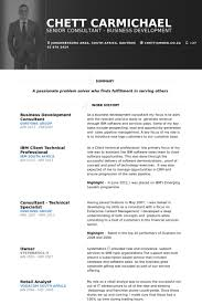 Business Development Manager Resume samples   VisualCV resume     Brefash