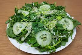 Resultado de imagem para salada verde