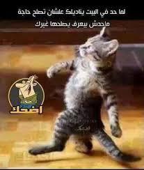 احم احم اجبد اك images?q=tbn:ANd9GcQ