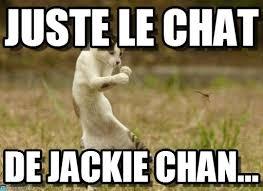 Résultat de recherche d'images pour 'lol cat en francais'