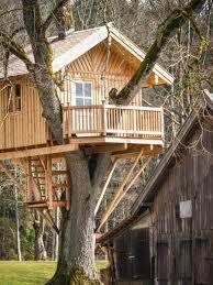 ᐈ Домики на <b>дереве</b> фотографии, фото <b>дом</b> на <b>дереве</b> | скачать ...