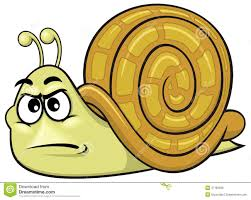 Image result for snail cartoon