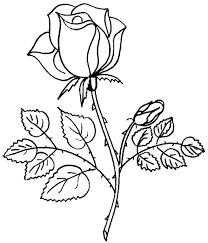 Bildergebnis für gifs kostenlos rosen