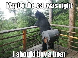 Maybe the cat was right I should buy a boat - Deep confession bear ... via Relatably.com