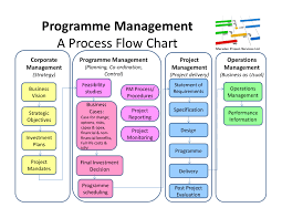 vision   marsden project services ltdsome thoughts  in the form of a diagram  on the programme management process