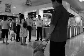 a history of documentary photography seeing eye dog china