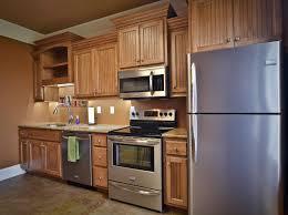 Diy Staining Kitchen Cabinets Kitchens Elegant Lowes Kitchen Cabinets Diy Kitchen Cabinets In