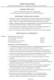 marketing resume summary examples  template marketing resume summary examples