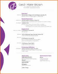 graphic designer resume format pdf budget template letter 25 graphic designer cv resume designs inspiration inspiration