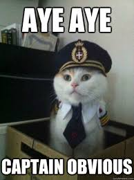 Aye Aye Captain obvious - Captain kitteh - quickmeme via Relatably.com