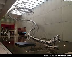 The most frightening thing, is that it existed. The Titanoboa ... via Relatably.com