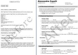 computer skills resume example list computer skills resume example    resume  advanced computer skills resume sample