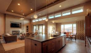 Open Kitchen And Dining Room Designs Kitchen Dining Room Warm Open Kitchen Feats Extraordinary Leather