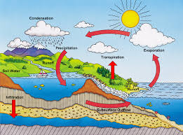 the water cycle   the importance of waterthe water cycle