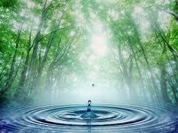 Resultado de imagem para água poesia
