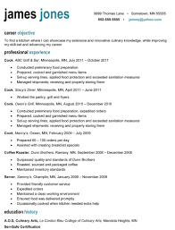 t resume free  seangarrette coresumes for it professionals with career objective feat professional experience and education history resume sample format free download   resume