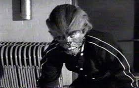 Image result for I was a teenage werewolf