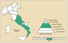File:Achillea barrelieri subsp mucronulata - Distribuzione.PNG ...