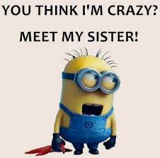 Crazy Sister on Pinterest   Funny Sister Pictures, Someecards ... via Relatably.com